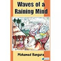 Waves of a Raining Mind